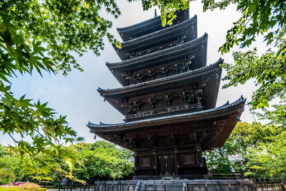 日本京都|東寺(教王護国寺)|五重塔之日本最高木造建築