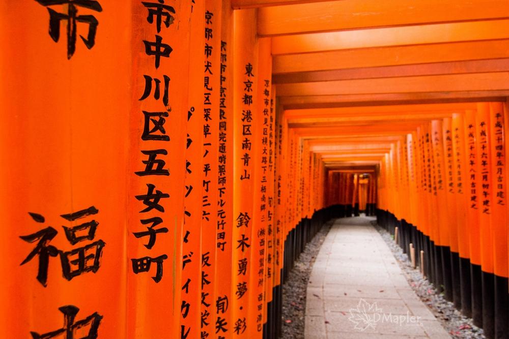 日本京都|伏見稻荷神社|夢幻般電影千本鳥居